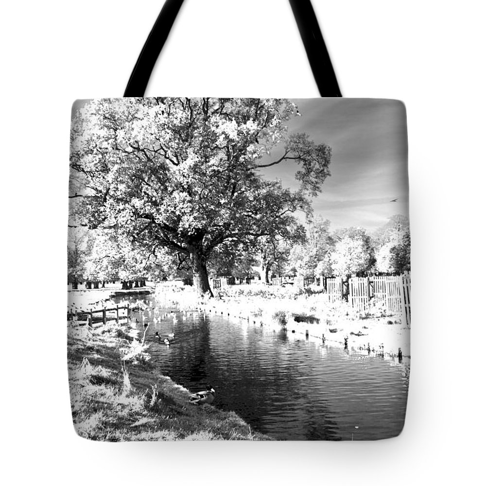 Greeting Card Tote Bag featuring the photograph Single Tree Aginst The Sun by Maj Seda
