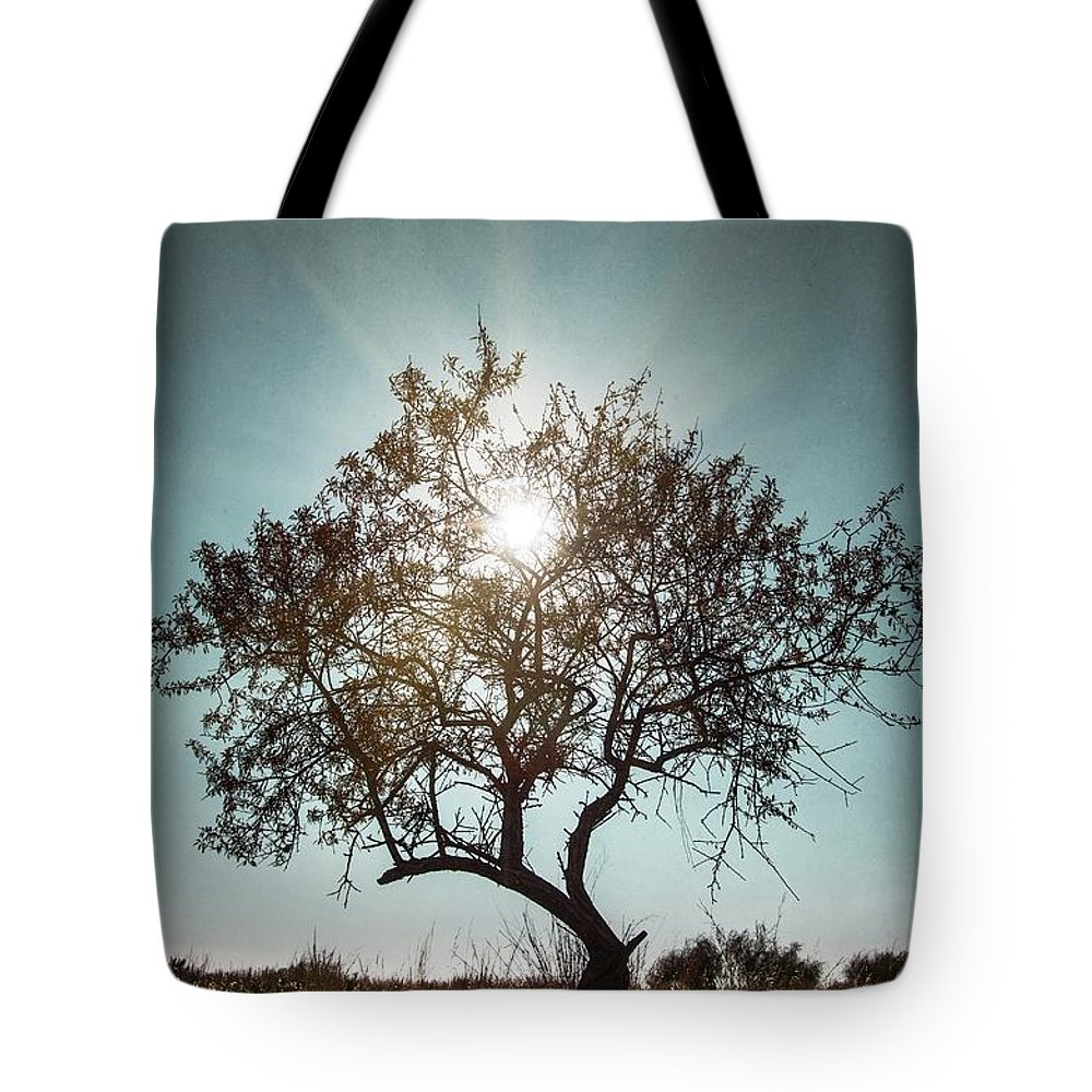 Dark Tote Bag featuring the photograph Single Tree by Carlos Caetano