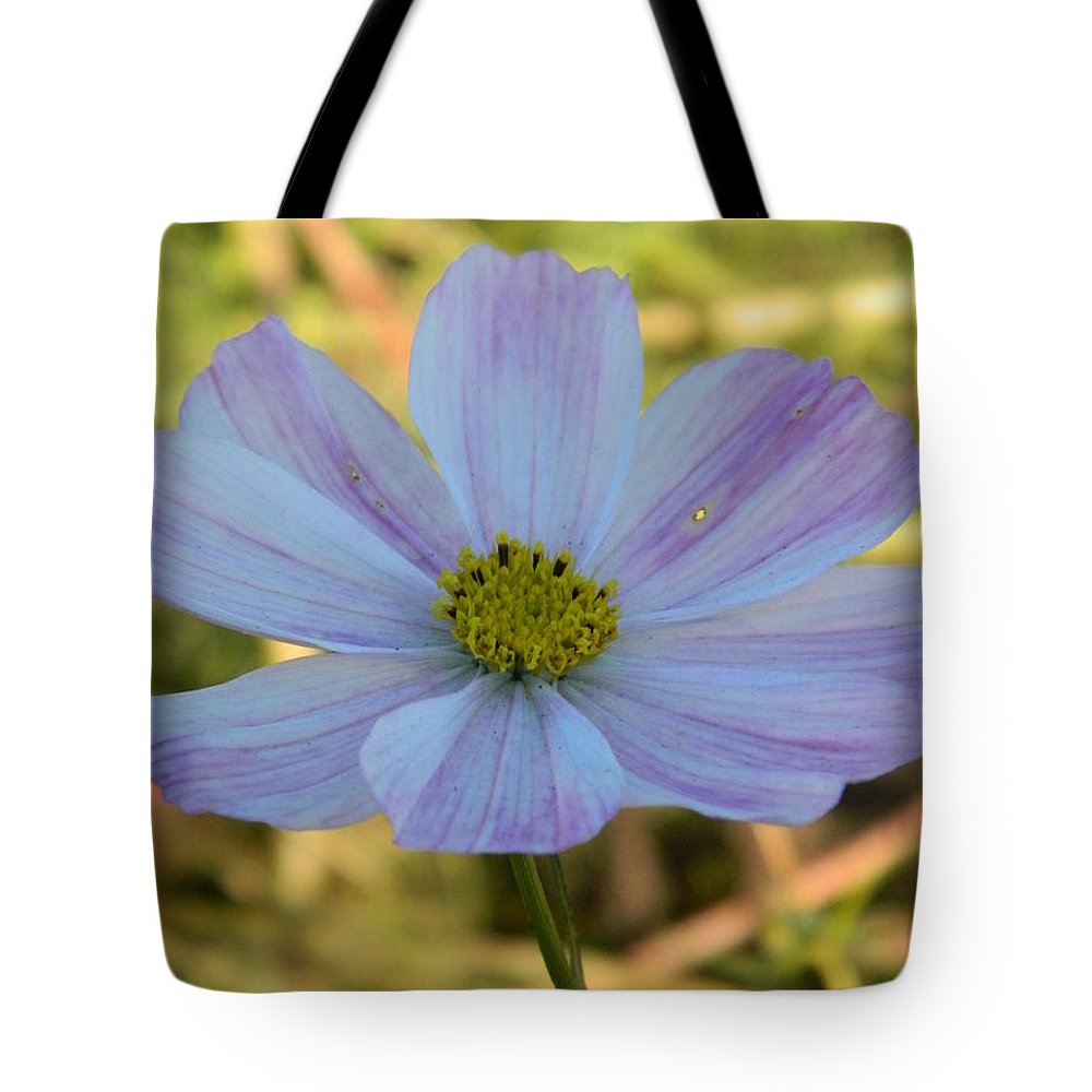 Cosmos Tote Bag featuring the photograph Singular Cosmos by Nicki Bennett