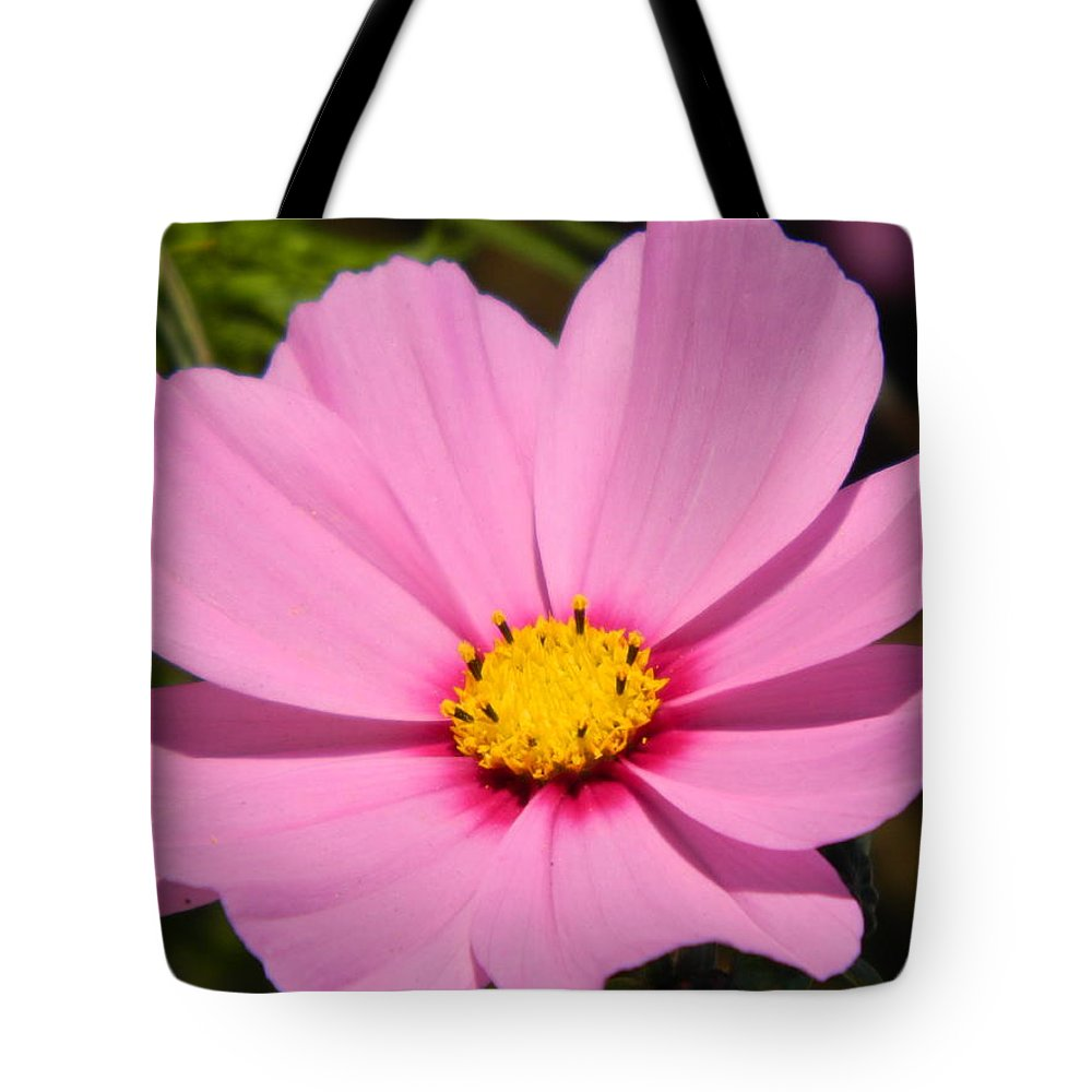 Pink Tote Bag featuring the photograph Singular Pink Cosmos by Nicki Bennett