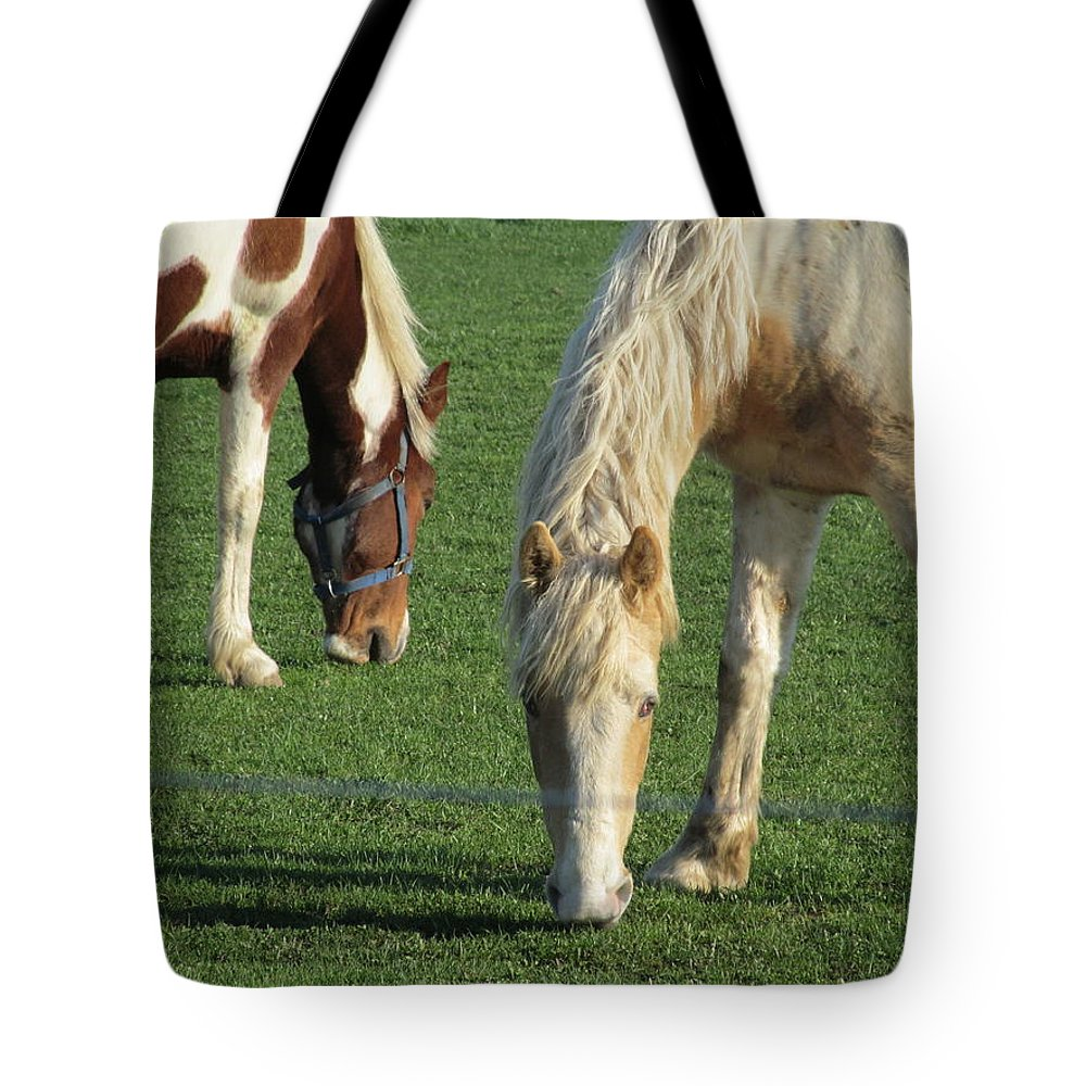 Horse Tote Bag featuring the photograph Sister Horses by Tina M Wenger