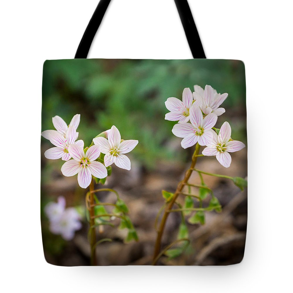 Wildflower Tote Bag featuring the photograph Sisterhood by Bill Pevlor