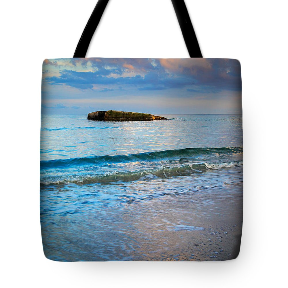Danish Tote Bag featuring the photograph Skagen Light by Inge Johnsson