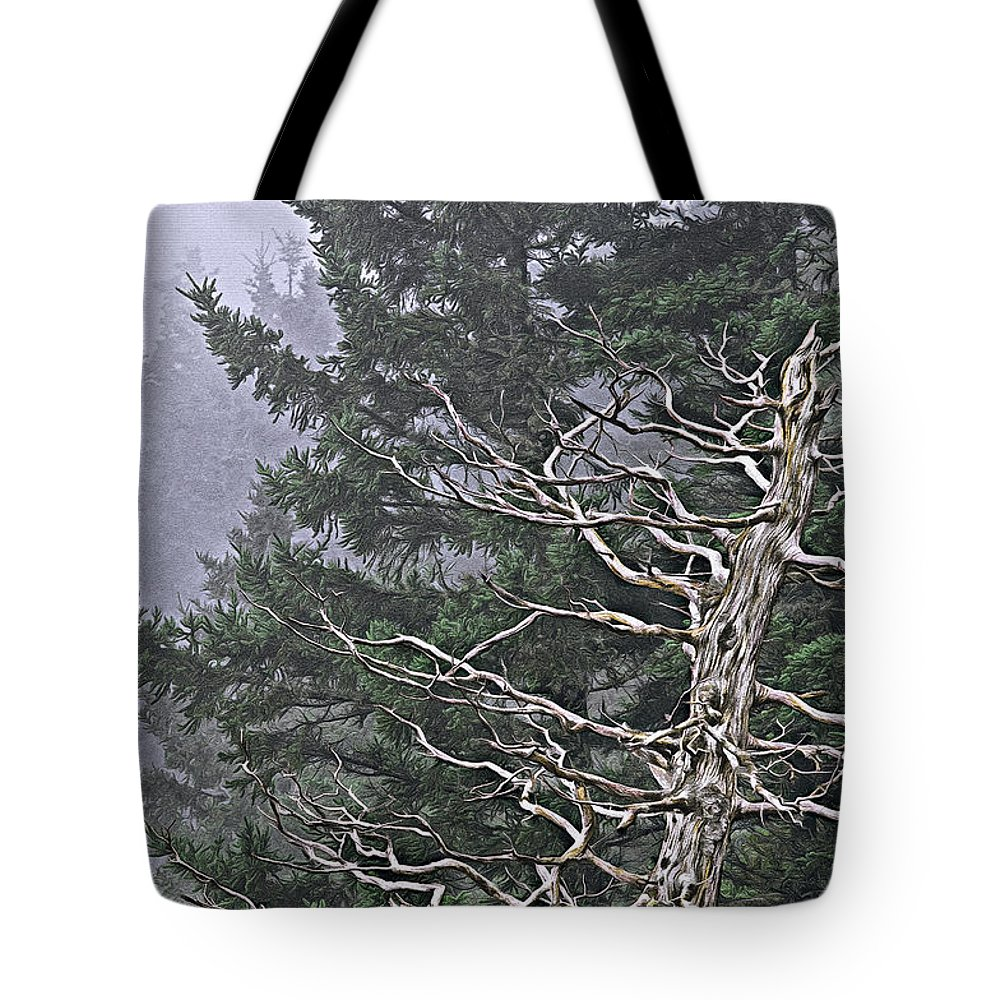 Skeletal Treescape Tote Bag featuring the photograph Skeletal Treescape by Marty Saccone