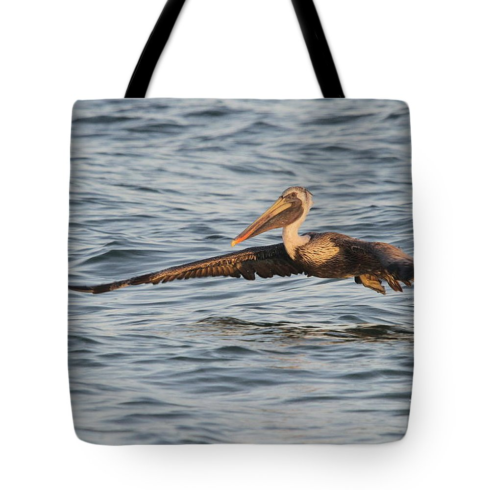 Pelican Tote Bag featuring the photograph Skim Over The Sea by Christiane Schulze Art And Photography