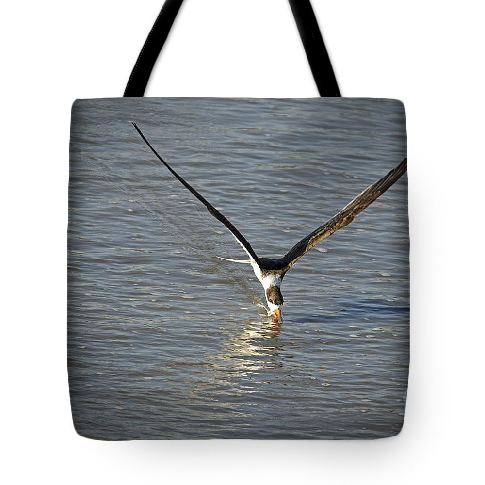 Tote Bag featuring the photograph Skimmer Fishing by TJ Baccari