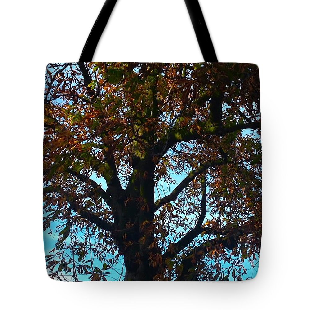 Blue Skies Tote Bag featuring the photograph Sky Fall by Joan-Violet Stretch