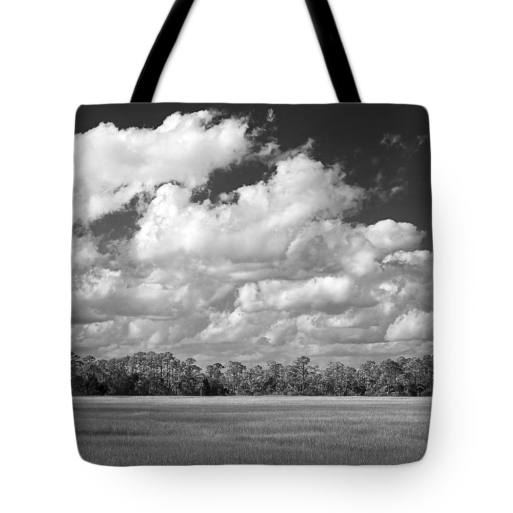 Florida Tote Bag featuring the photograph Sky Over St. Marks by Bill Chambers