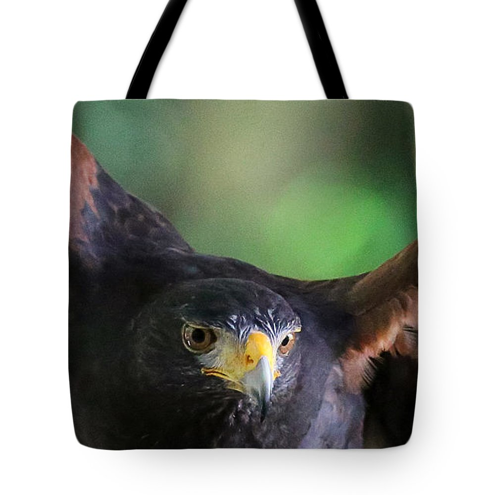 Harris's Tote Bag featuring the photograph Sky Wolf by Rebecca Morgan
