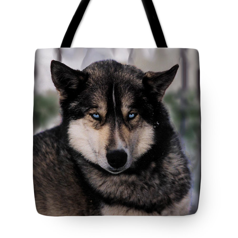 Sled Dog Tote Bag featuring the photograph Sled Dog Resting by Kae Cheatham