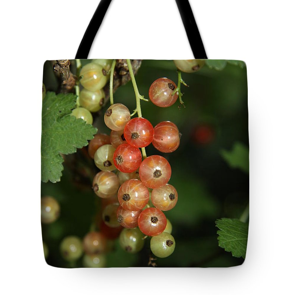Red Currant Tote Bag featuring the photograph Slightly Underripe by Christiane Schulze Art And Photography