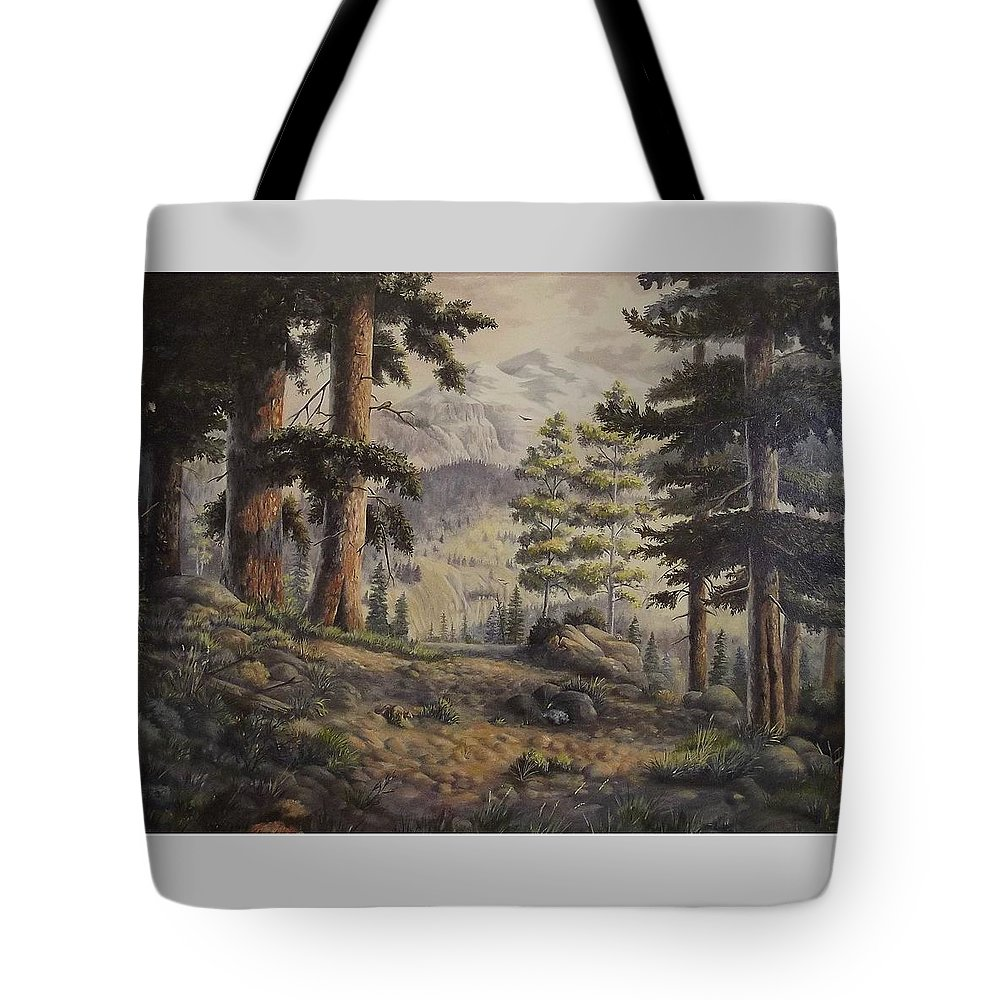 Slumgullian Mountain Colo. Tote Bag featuring the painting Slumgullian Pass by Wanda Dansereau