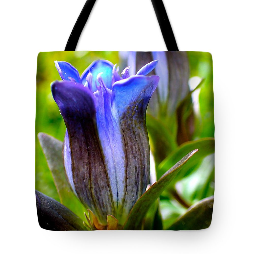 Blue Tote Bag featuring the photograph Blue Bliss by Lora Louise
