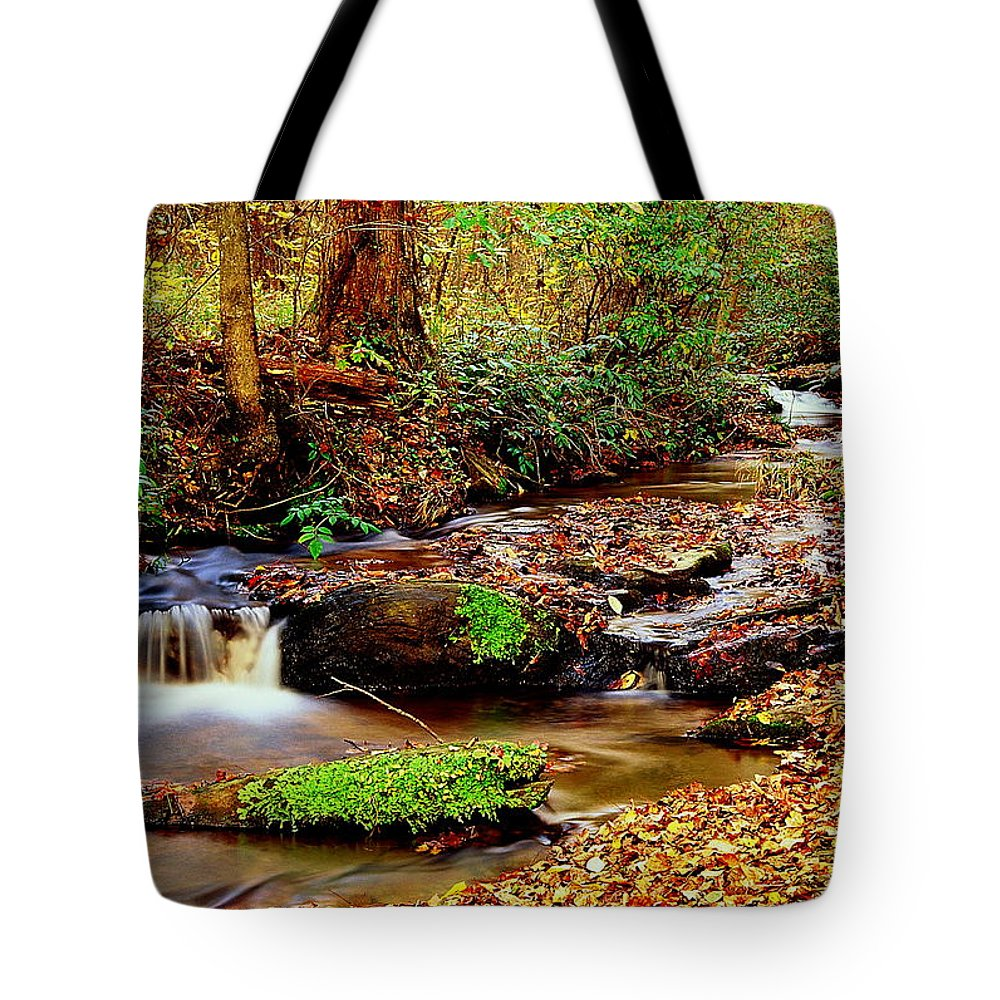 Fine Art Tote Bag featuring the photograph Small Waterfall And Stream 2 by Rodney Lee Williams