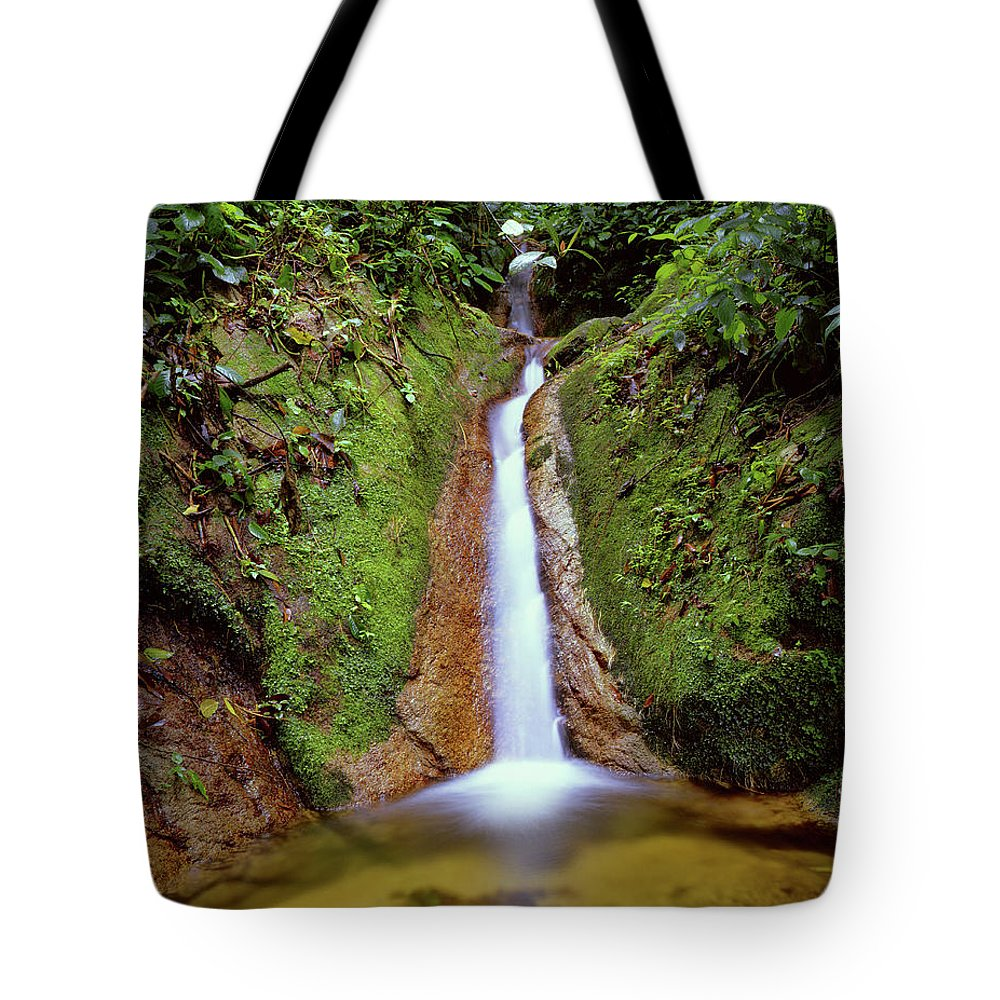 South America Tote Bag featuring the photograph Small Waterfall In Tropical Rain Forest by Fstoplight