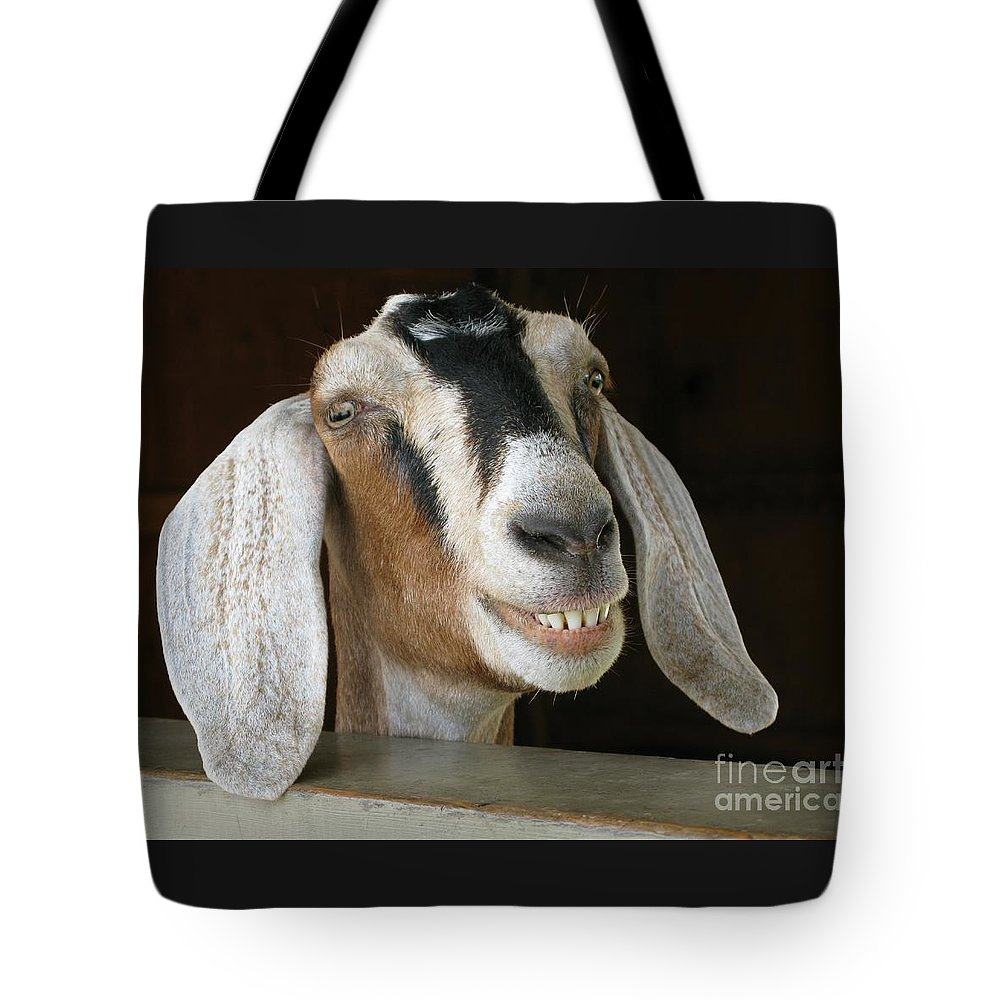 Goat Tote Bag featuring the photograph Smile Pretty by Ann Horn