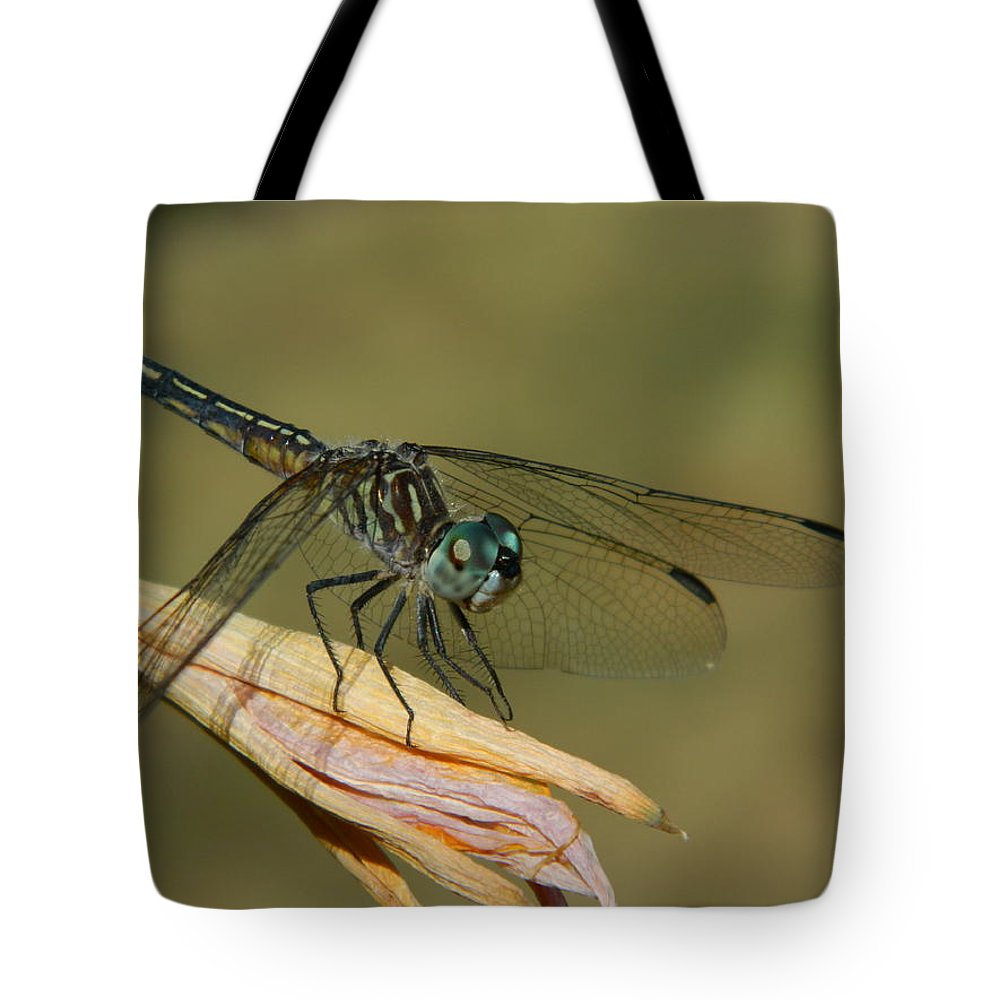 Dragonfly Tote Bag featuring the photograph Smiling Dragon by Terri Waselchuk