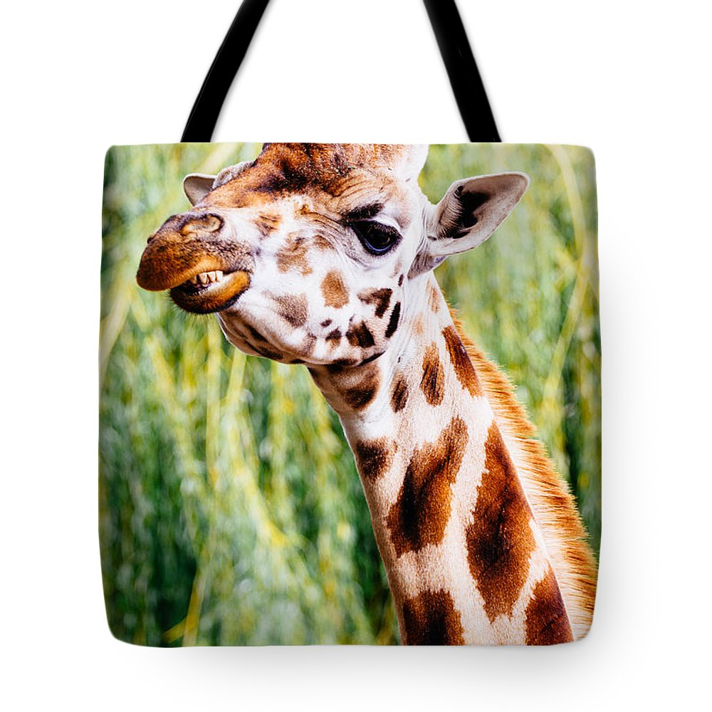 Smile Tote Bag featuring the photograph Smiling Giraffe by Pati Photography