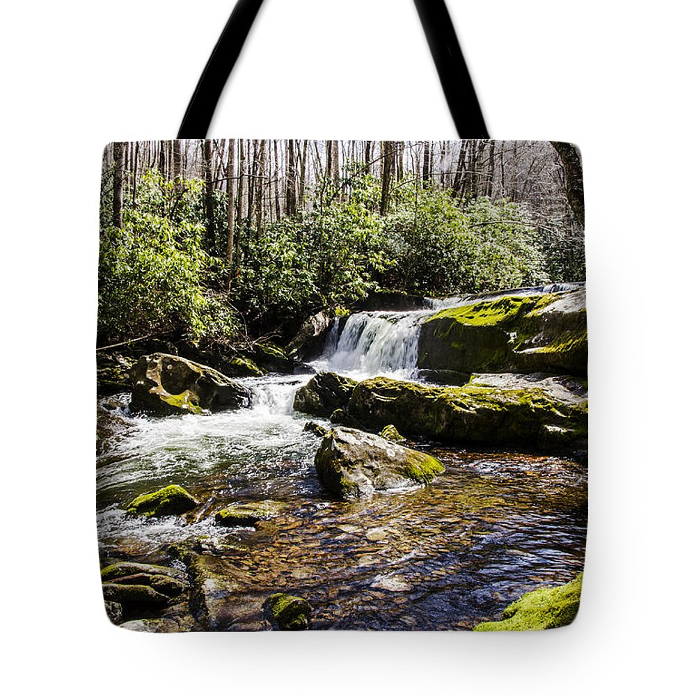 Smoky Mountains Tote Bag featuring the photograph Smoky Mountain Waterfalls by Paul Mashburn