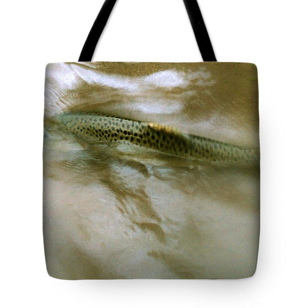 Smolt Tote Bag featuring the photograph Smolt Swim by Sara Stevenson