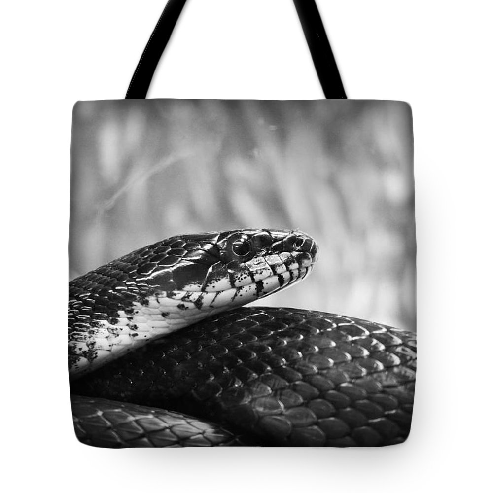 Kelly Hazel Tote Bag featuring the photograph Snake In Black And White by Kelly Hazel