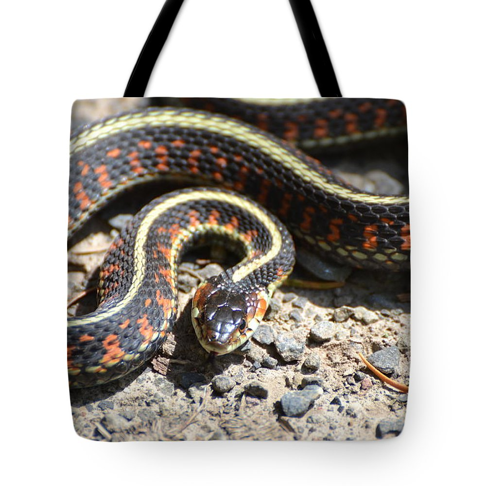 Snake Tote Bag featuring the photograph Snake by Robin White
