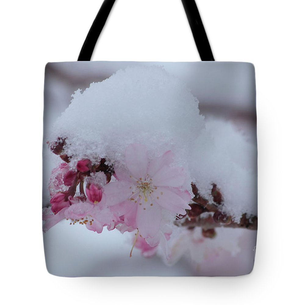 Cherry Blossoms Tote Bag featuring the photograph Snow Covered Pink Cherry Blossoms by Luv Photography