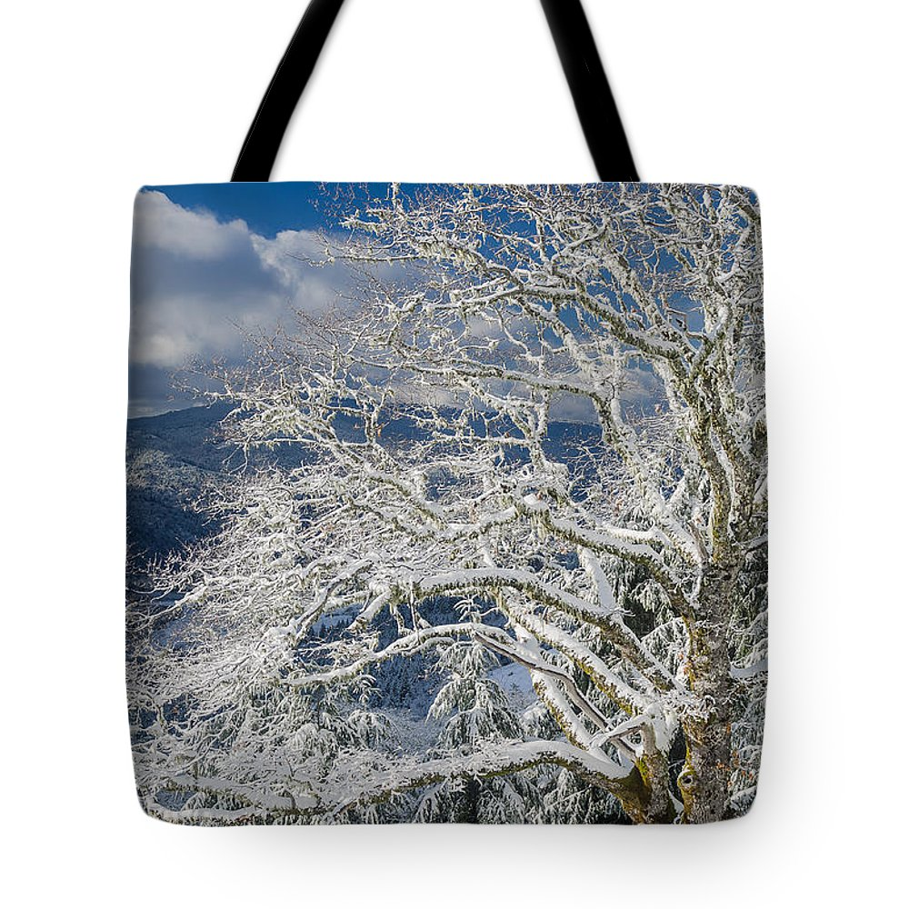 Dramatic Sky Tote Bag featuring the photograph Snow Covered Tree And Winter Scene by Greg Nyquist