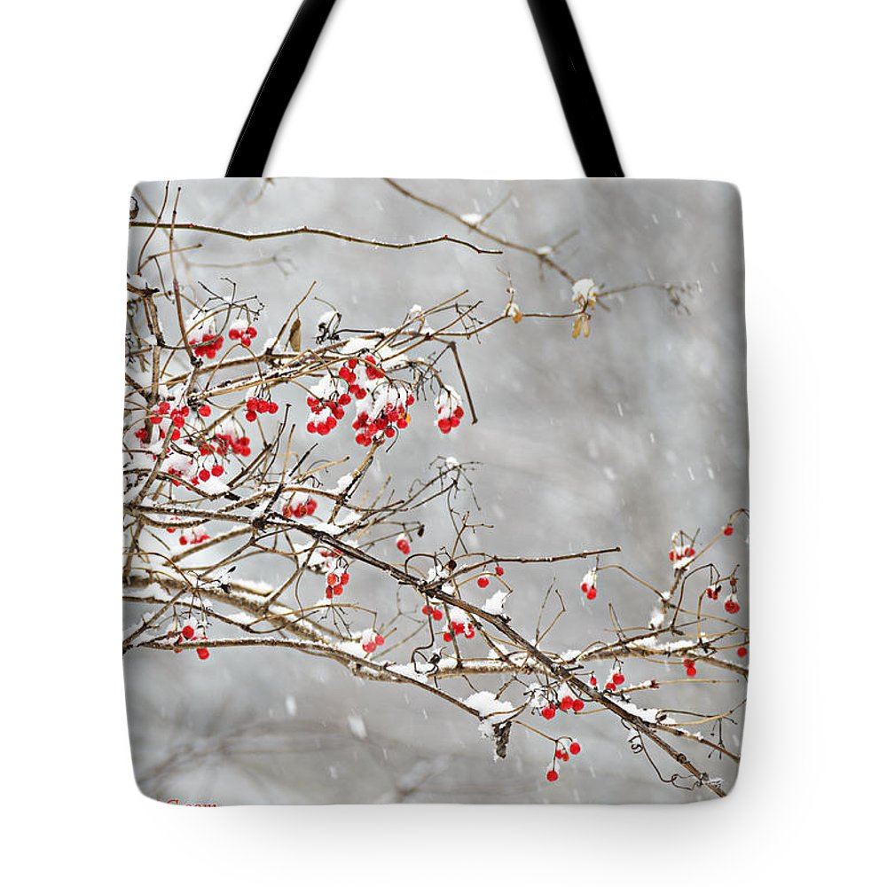 Trees Tote Bag featuring the photograph Snow Covered Winter Berries by LeeAnn McLaneGoetz McLaneGoetzStudioLLCcom