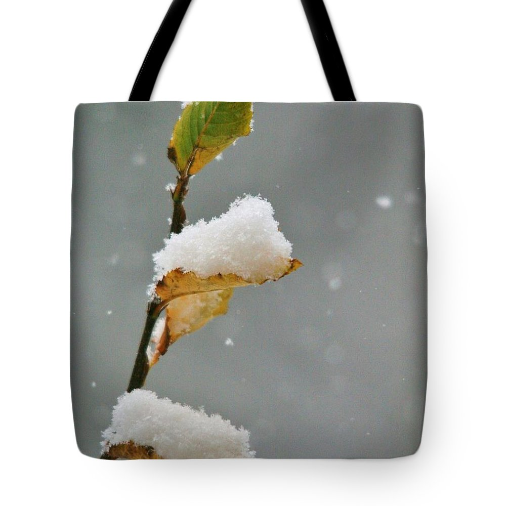 Snow Tote Bag featuring the photograph Snow Kissed by Karen Jones