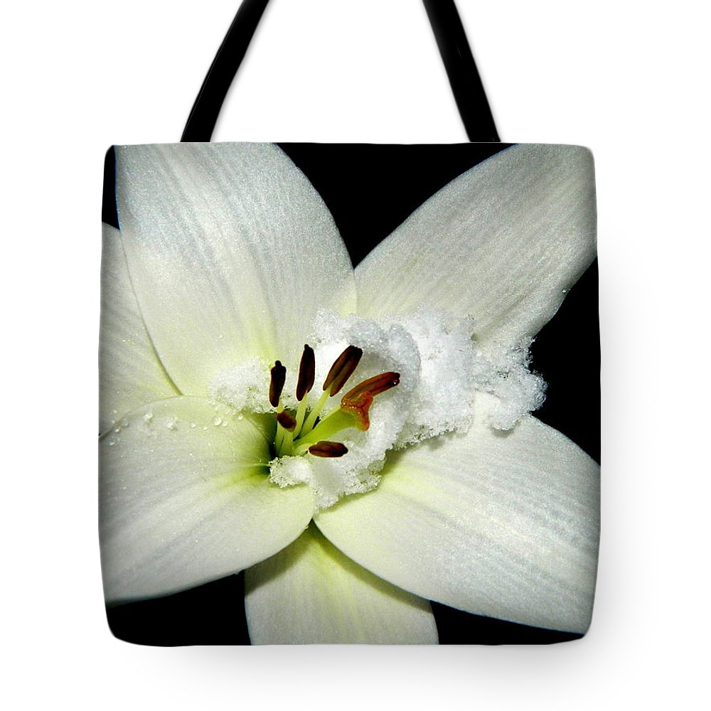 Snow Tote Bag featuring the photograph Snow Lilly by Kathy Barney