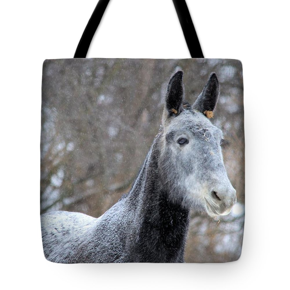 Mule Tote Bag featuring the photograph Snow Mule by Bonfire Photography
