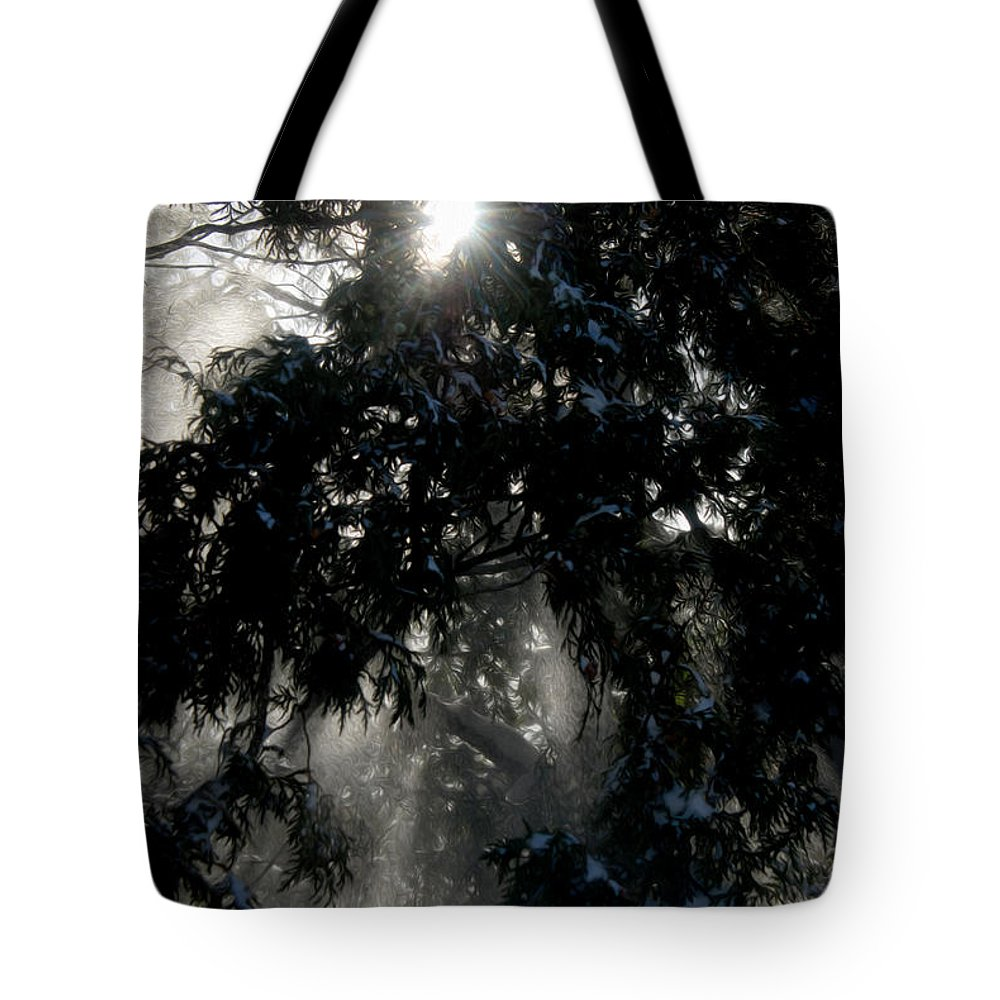 Trees Tote Bag featuring the photograph Snow Rays by Tracy Winter