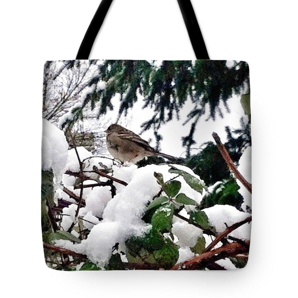 Snow Scene Of Little Bird Tote Bag featuring the photograph Snow Scene Of Little Bird Perched by Susan Garren