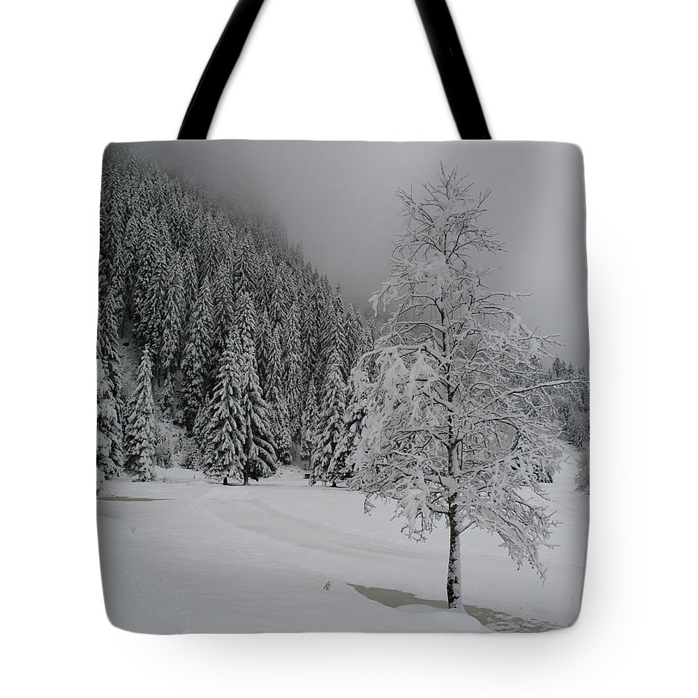 Snow Tote Bag featuring the photograph Snow Tree by Christiane Schulze Art And Photography