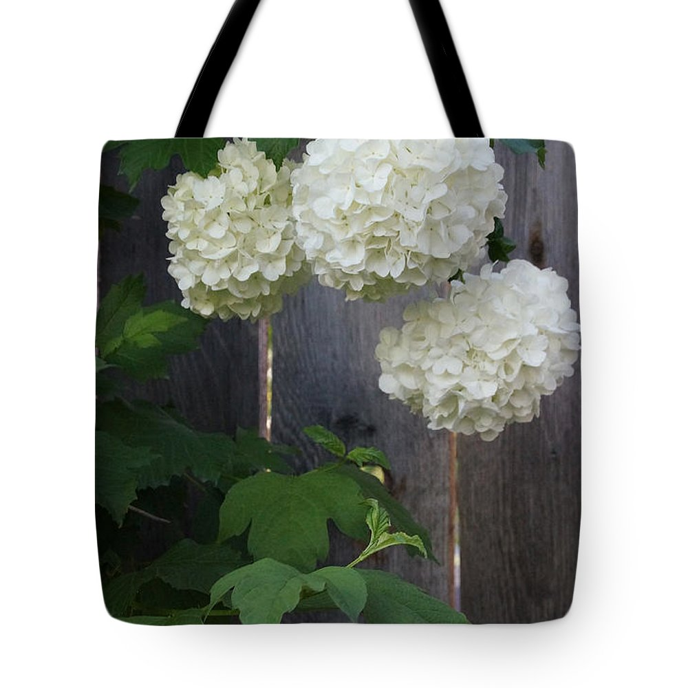 Snowball Tote Bag featuring the photograph Snowball Flowers by Mick Anderson