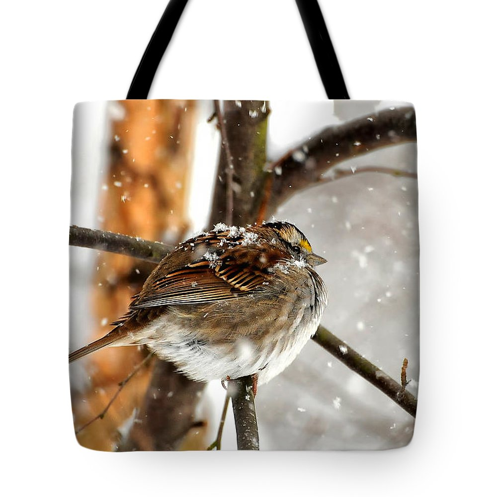 Bird Tote Bag featuring the photograph Snowball by Lois Bryan