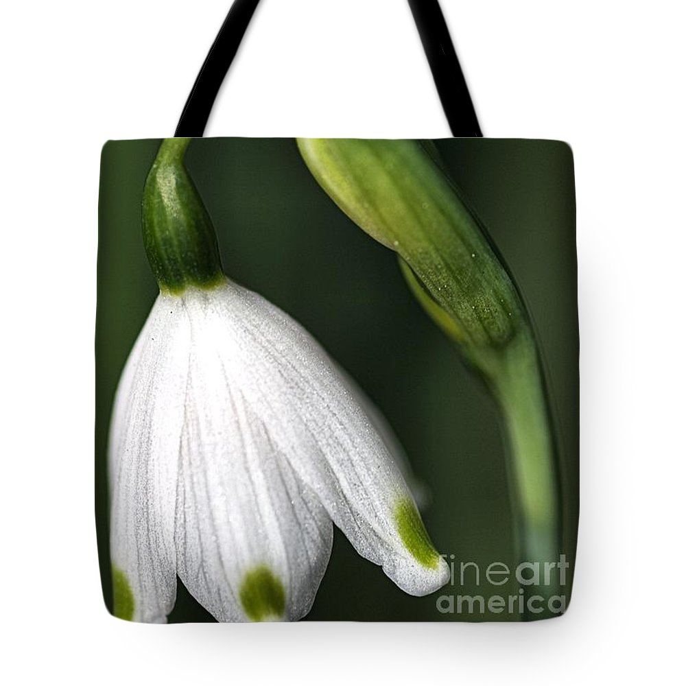 Snowdrop Flower Tote Bag featuring the photograph Snowdrop by Joy Watson