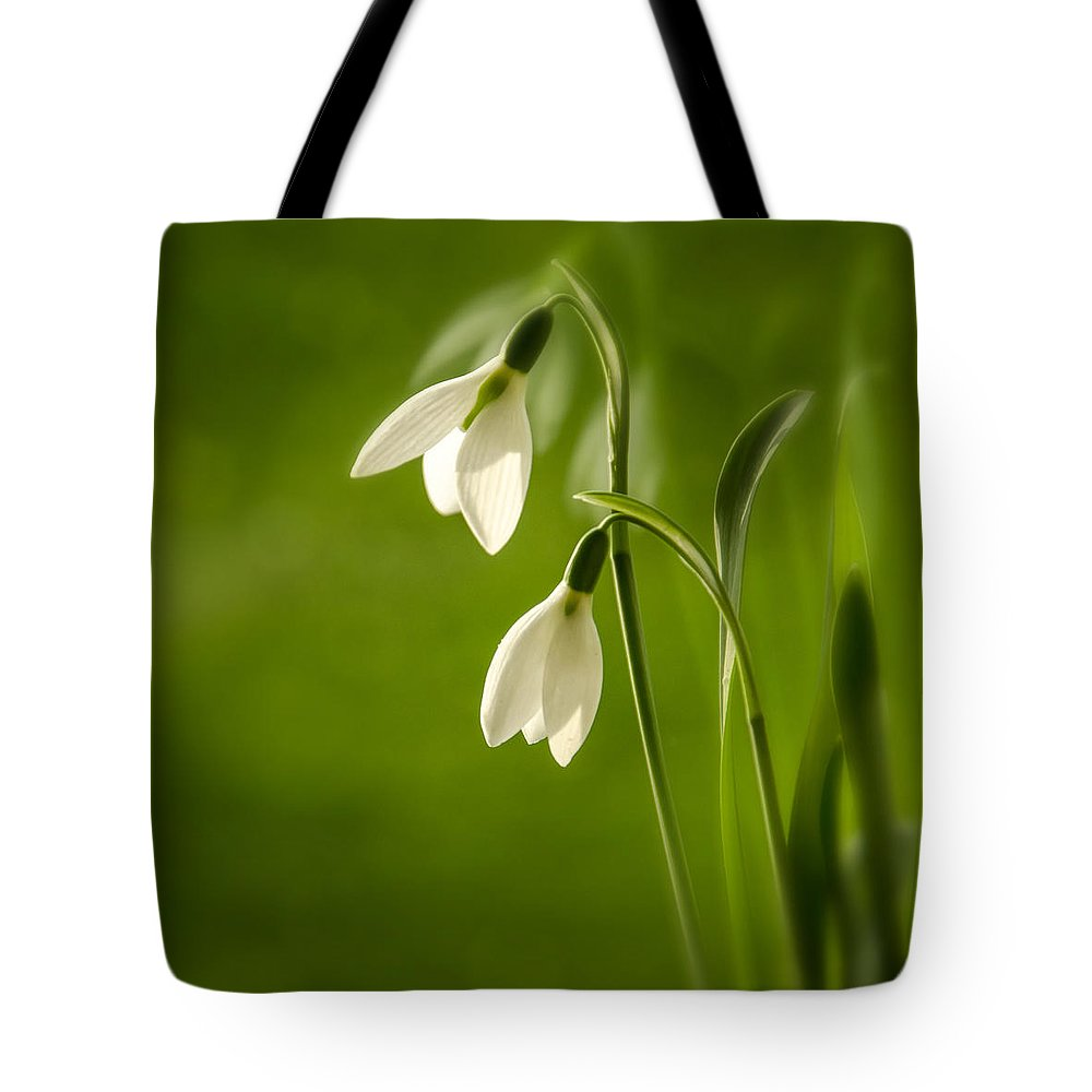 Background Tote Bag featuring the photograph Snowdrop by TouTouke A Y