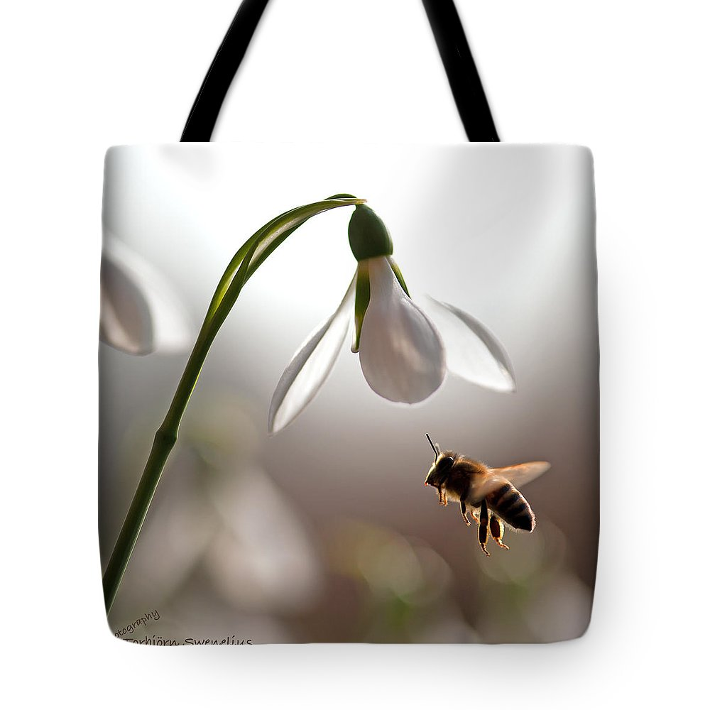 Snowdrops And The Bee Tote Bag featuring the photograph Snowdrops And The Bee by Torbjorn Swenelius