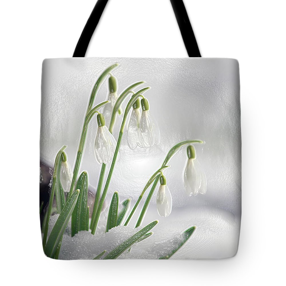 Snowdrops Tote Bag featuring the photograph Snowdrops On Ice by Sharon Talson
