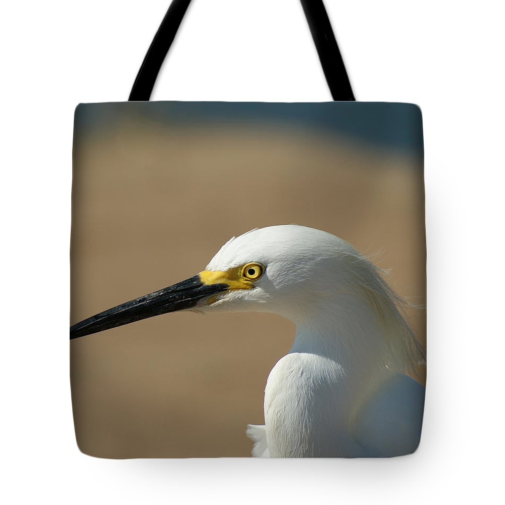 Birds Tote Bag featuring the photograph Snowy Egret Profile by Ernie Echols