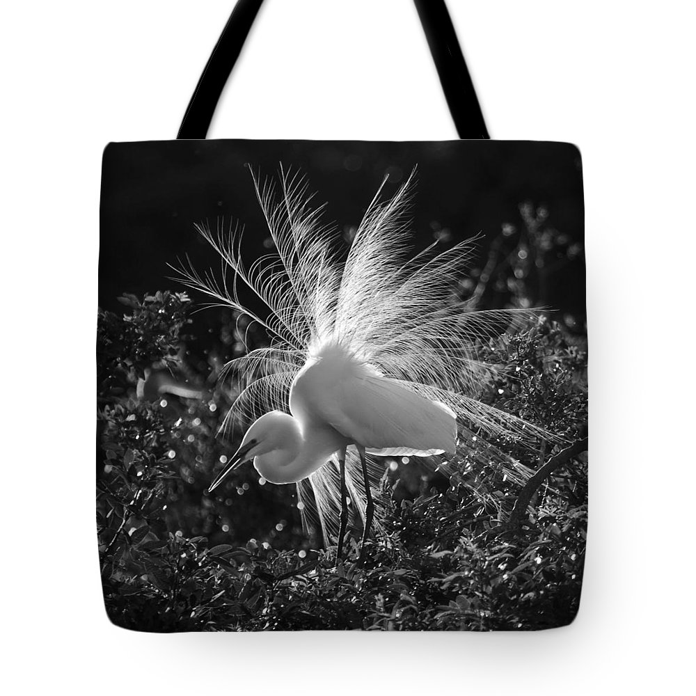 Snowy Egret Tote Bag featuring the photograph Snowy Egret by Sandy Swanson