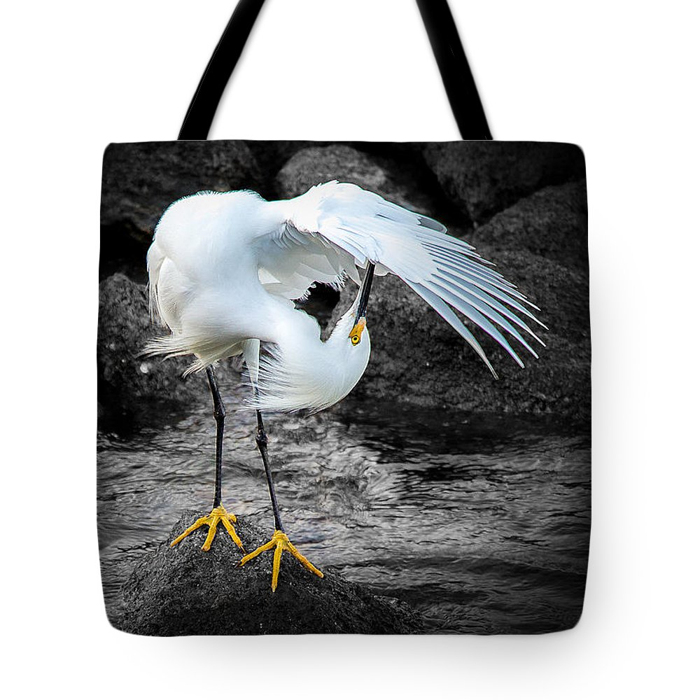 St Augustine Tote Bag featuring the photograph Snowy Egret by Shannon Tibbetts