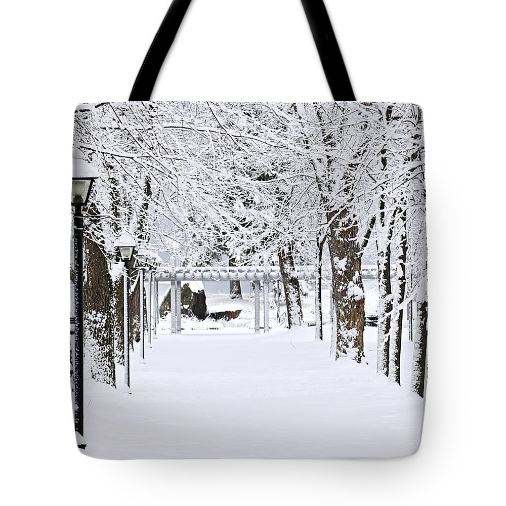 Winter Tote Bag featuring the photograph Snowy Lane In Winter Park by Elena Elisseeva