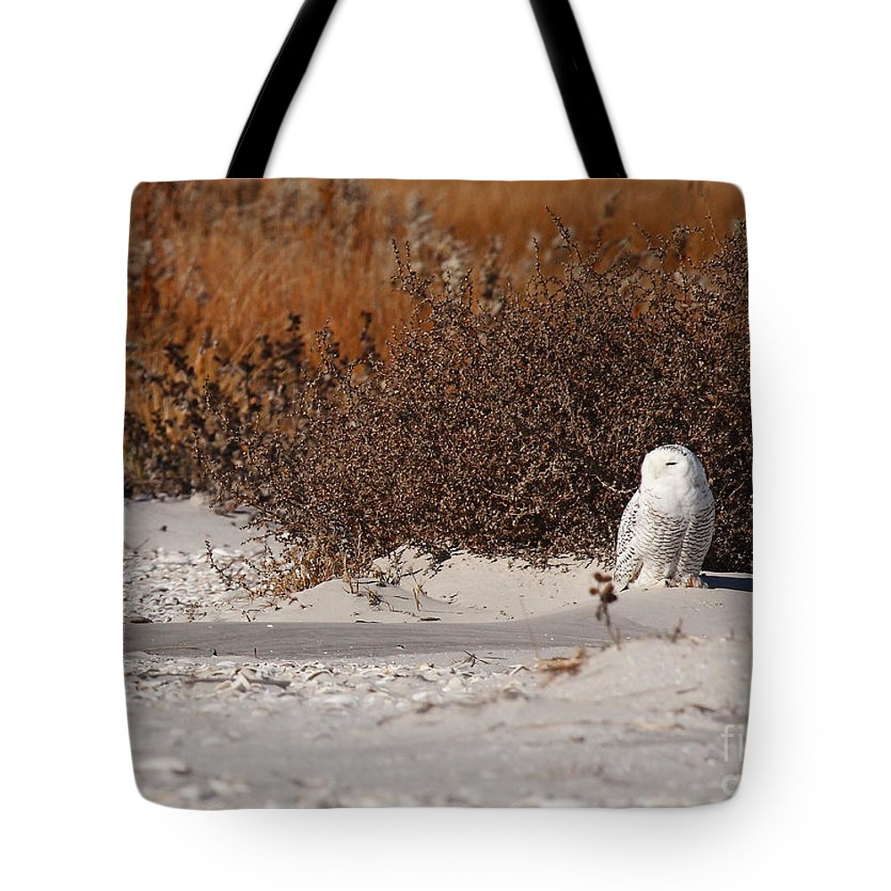 snowy Owl Tote Bag featuring the photograph Snowy Owl by Traci Law