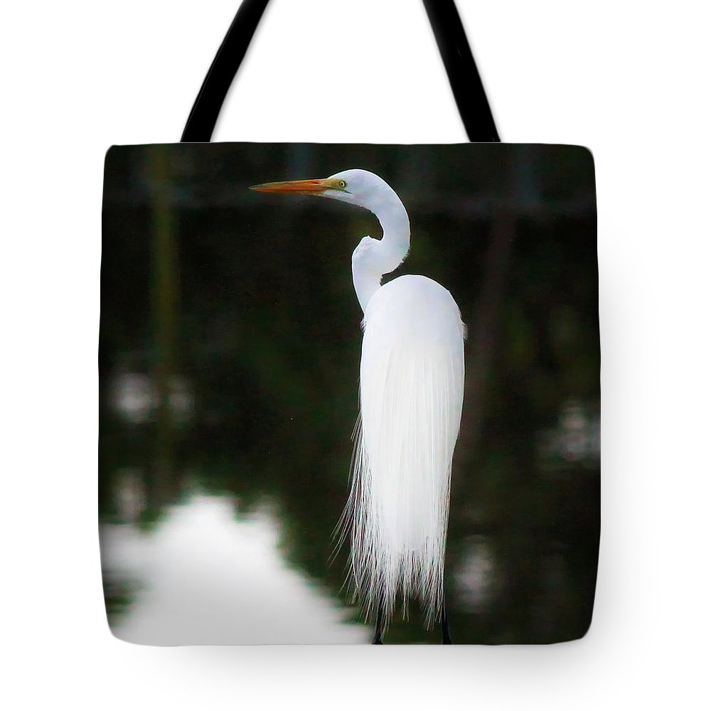 Snowy Egret Tote Bag featuring the photograph Snowy Showy Egret by Barbara Chichester