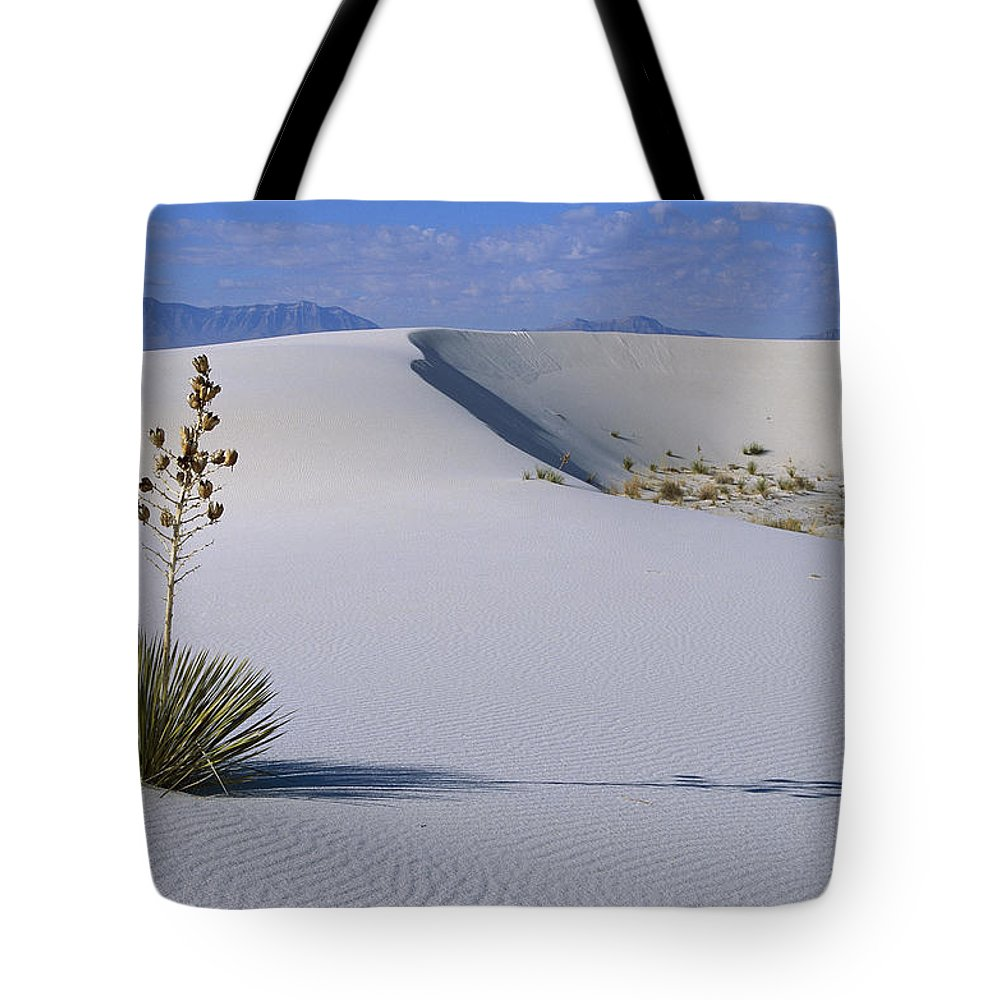 Arid Tote Bag featuring the photograph Soaptree Yucca At White Sands Nm by Konrad Wothe