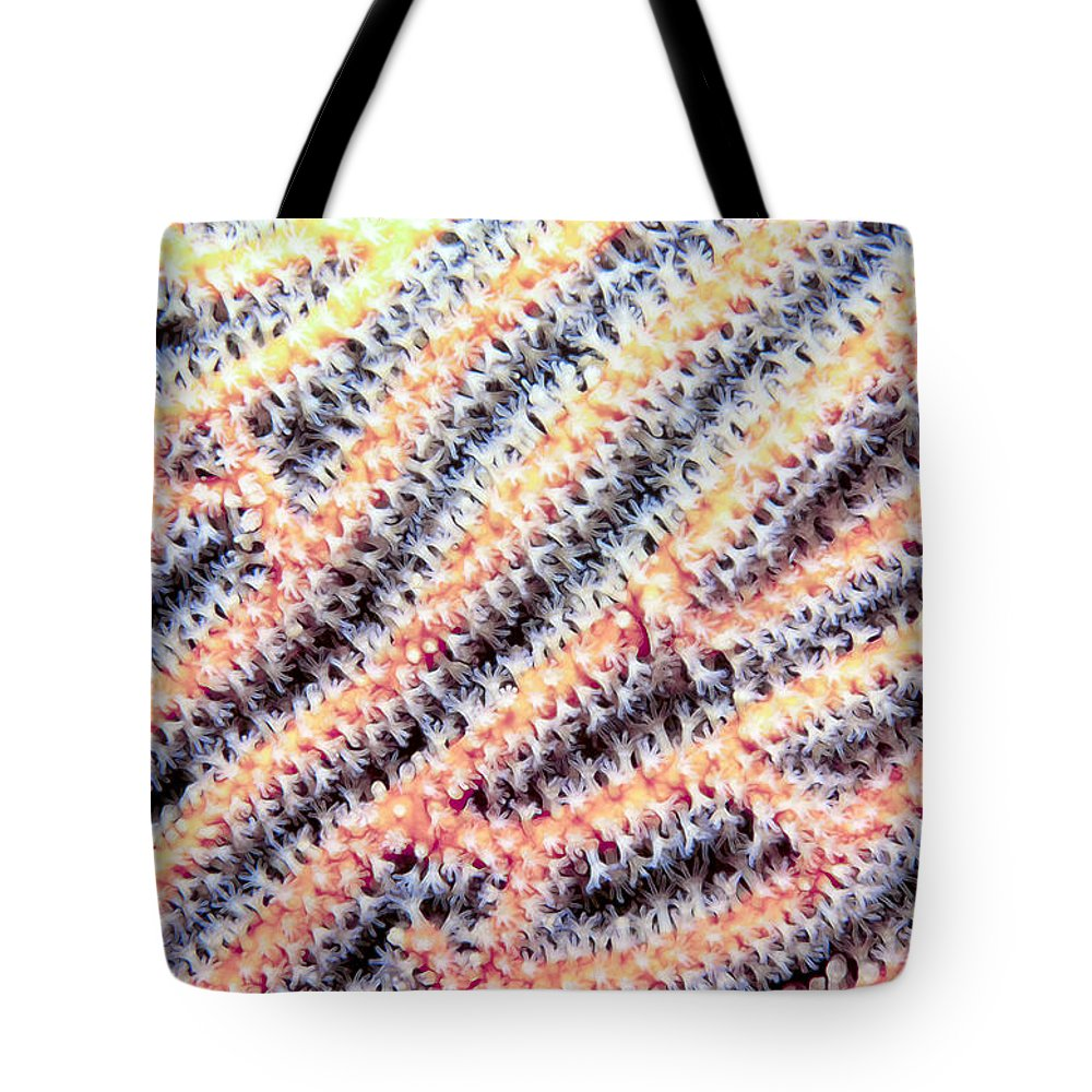 Micronesia Tote Bag featuring the photograph Soft Corals 10 by Dawn Eshelman