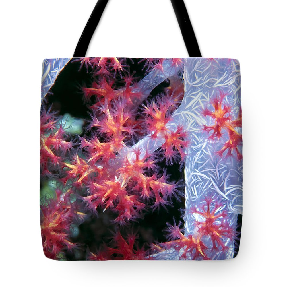 Micronesia Tote Bag featuring the photograph Soft Corals 18 by Dawn Eshelman